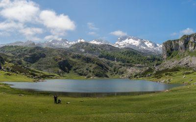 Asturias 2019. Convocatoria de oposiciones. Primaria.